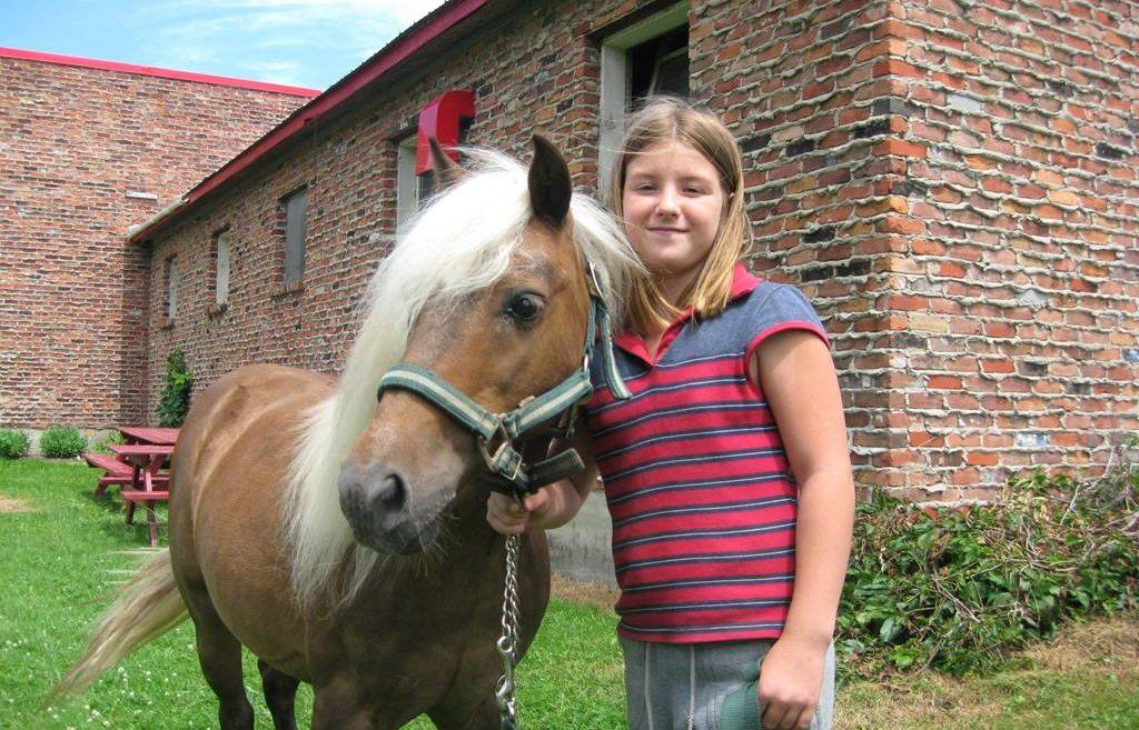 Centre equestre Bedford