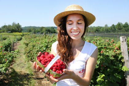 Au Paradis des Fruits Dunham